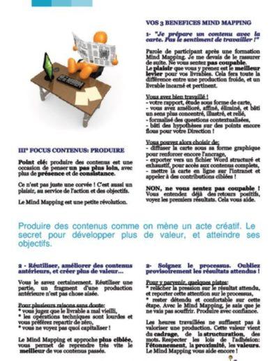Livre_Blanc_Mind_Mapping_Decision_Focus_Contenus_p10.JPG
