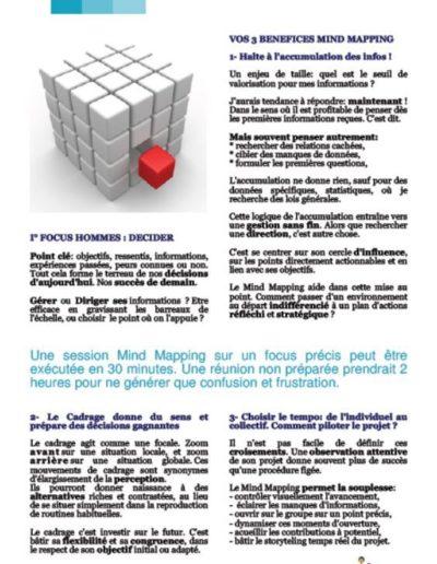 Livre_Blanc_Mind_Mapping_Decision_Focus_Hommes_Organisation_p7.JPG