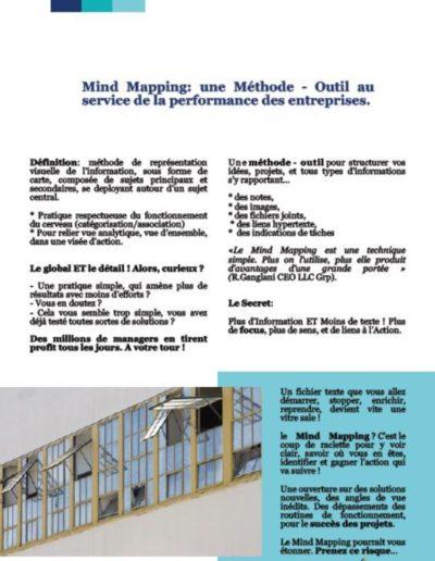 Livre_Blanc_Mind_Mapping_Decision_Principes_Cartes_Mentales_p4.JPG