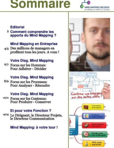 Sommaire_Livre_Blanc_Mind_Mapping_Decision_18_Situations_Pour_En_Profiter.JPG