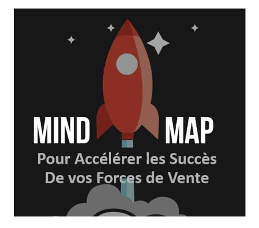 Mind Mapping pour les commerciaux. Cartes Mentales pour mieux vendre