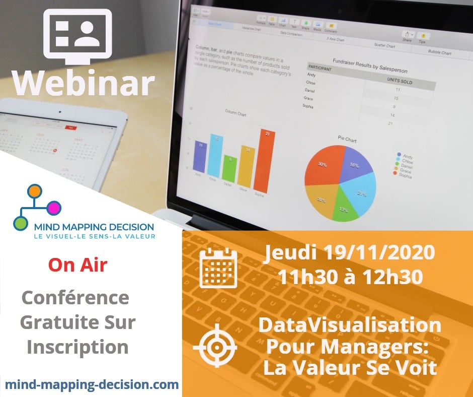Webinar Mind Mapping Decision Datavisualisation pour Managers