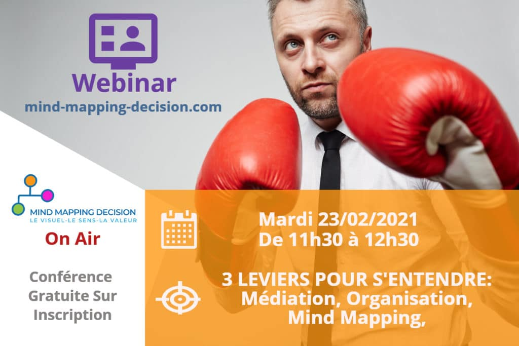 Webinar Médiation Mind Mapping Décision Intelligence Colective